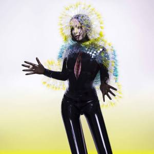 Björk - Vulnicura - c i n e m a r a m a