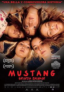 Mustang: Belleza salvaje (Mustang) - c i n e m a r a m a